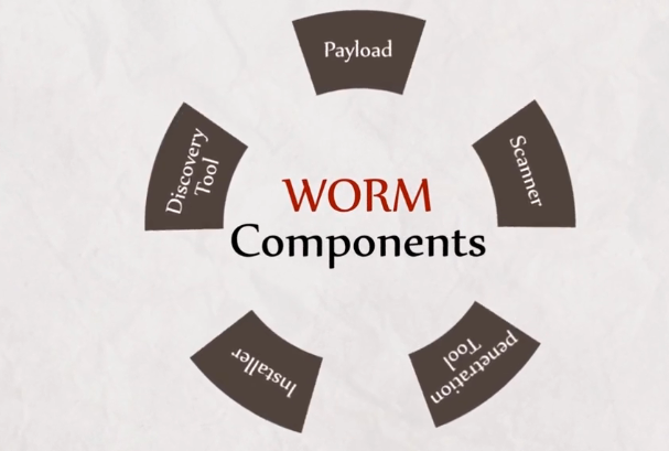 computer worm explained in tamil